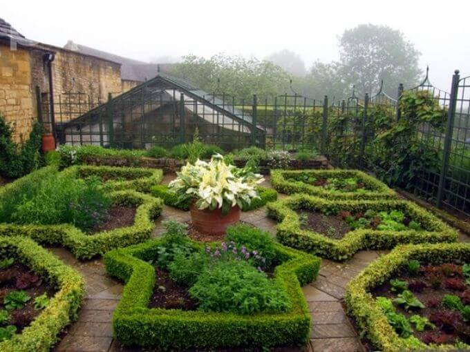 Защитим сад и огород от вредителей и болезней тем, что есть под рукой...
