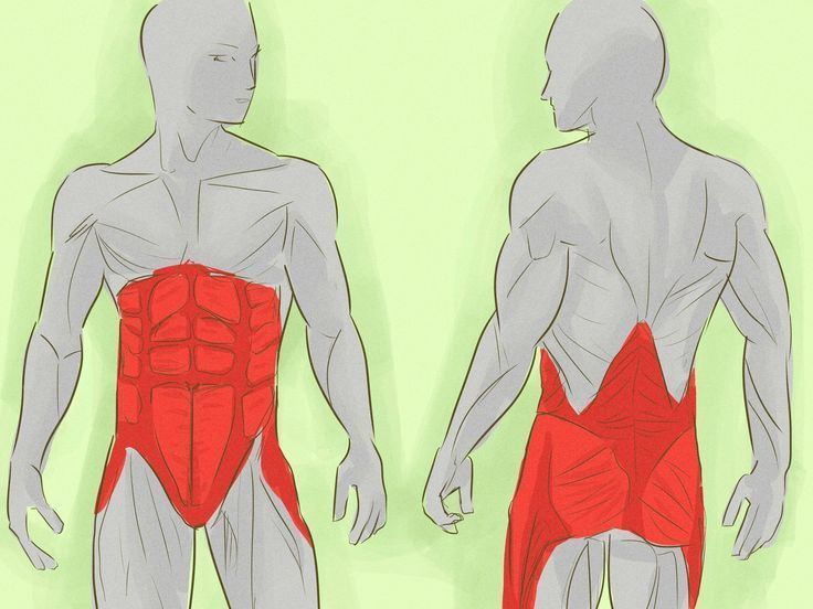 Картинки по запросу Укрепляем мышечный корсет и поддерживаем позвоночник: 5-минутные упражнения по Мюллеру