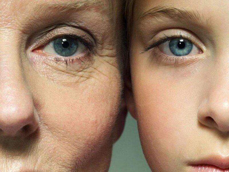 120 лет жизни – только начало. Как победить старение?