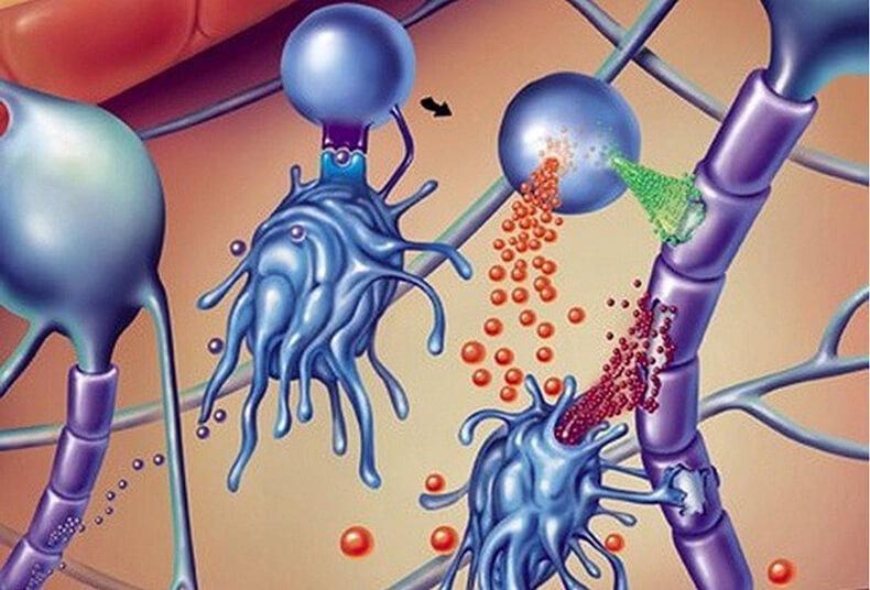 Серагем лечения рассеянного склероза