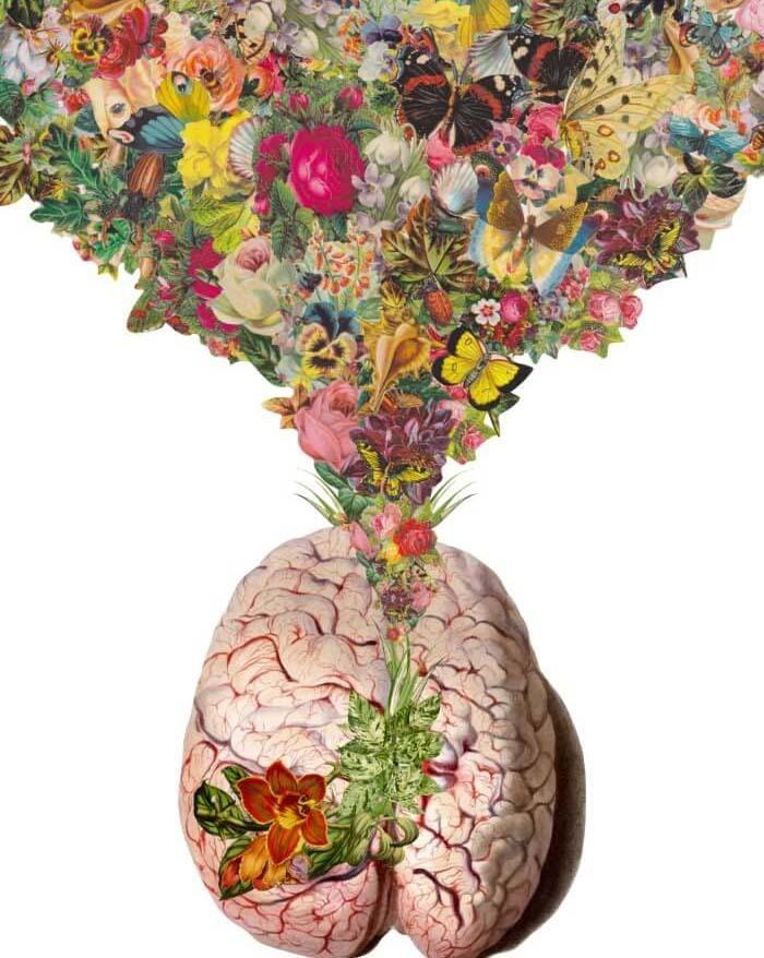 Картинки по запросу Тест, грозит ли вам болезнь Альцгеймера