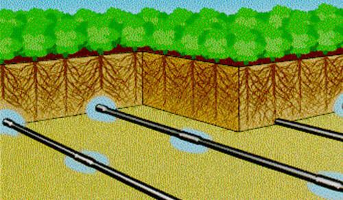 Капельный полив под землей