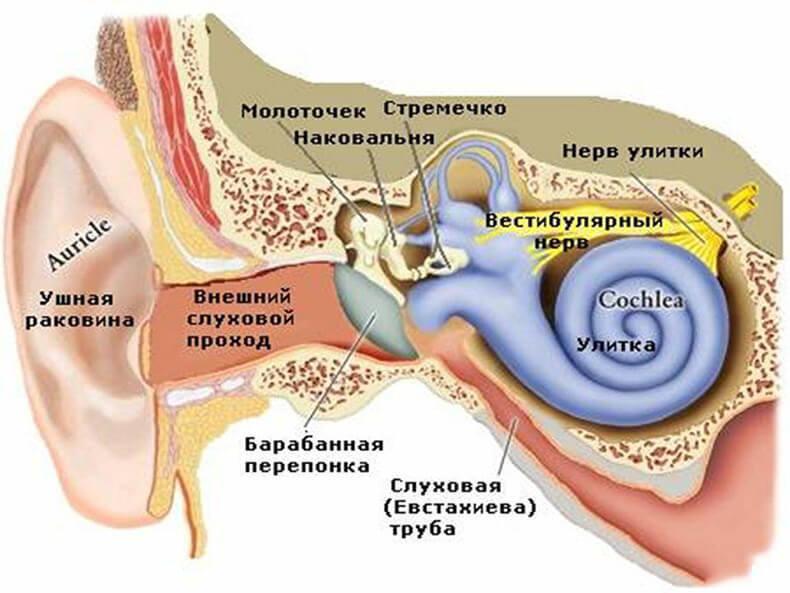 Упражнения как лечение головокружения при отолитиазе