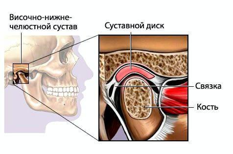 К каким по форме суставам относятся височно нижнечелюстной сустав яблочный уксус аптечный для суставов