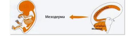 https://econet.ru/uploads/pictures/250532/content_snimok_ekrana_2016-05-21_v_12_51_14__econet_ru.png