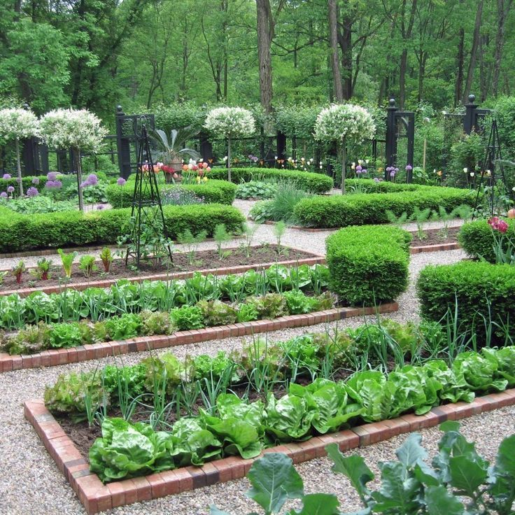 сливочное дизайн огорода участка картинки необходим тем