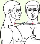 Вторая зона массажа