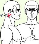 Четвертая зона массажа