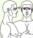 Седьмая зона массажа