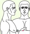 Девятая зона массажа