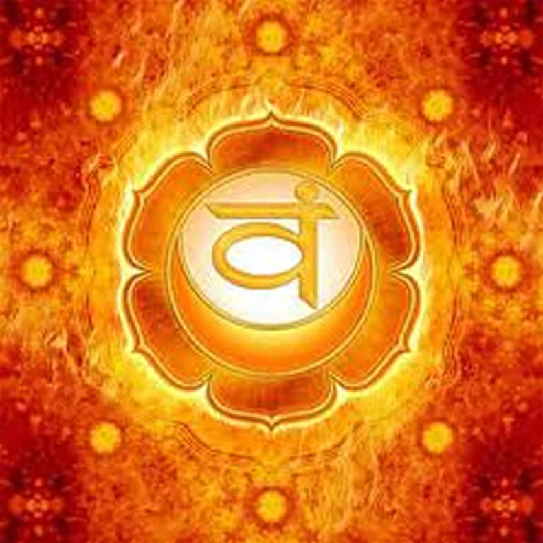 Эффект воздействия растений на чакры — равновесие ума, тела и духа Content_chakra2_1__econet_ru
