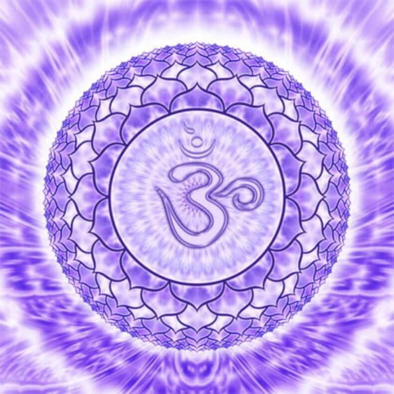 Эффект воздействия растений на чакры — равновесие ума, тела и духа Content_chakra7_1__econet_ru