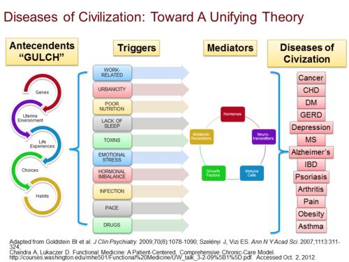 Болезни цивилизации: что делать и кто виноват