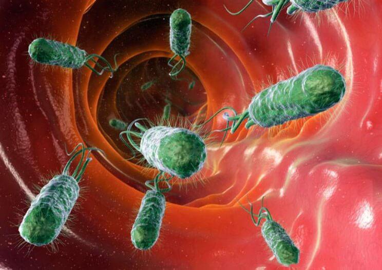 Узнайте какие опасные болезни могут вызывать паразиты в нашем теле