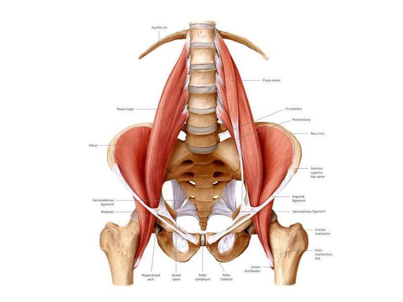 Спазм мышц поясничного отдела упражнения thumbnail