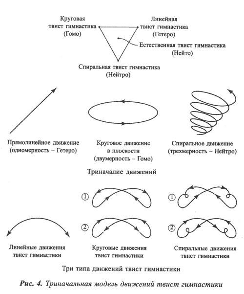 триначальная модель движений спиральной гимнастики
