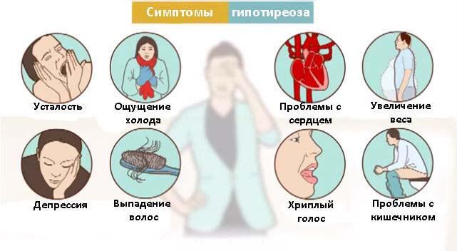12 признаков того, что надо проверить щитовидную железу. Скрытый враг — гипотиреоз…