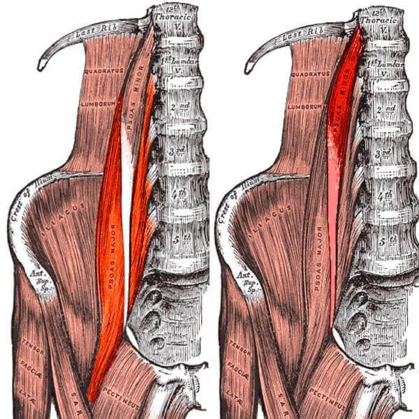 Подвздошно-поясничный сустав боль в суставах крем