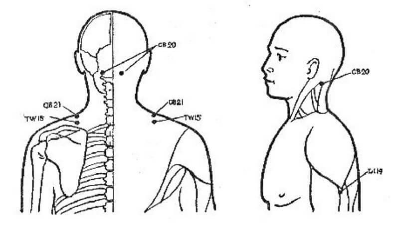 Изображение - Точечный массаж плечевого сустава content_1__econet_ru