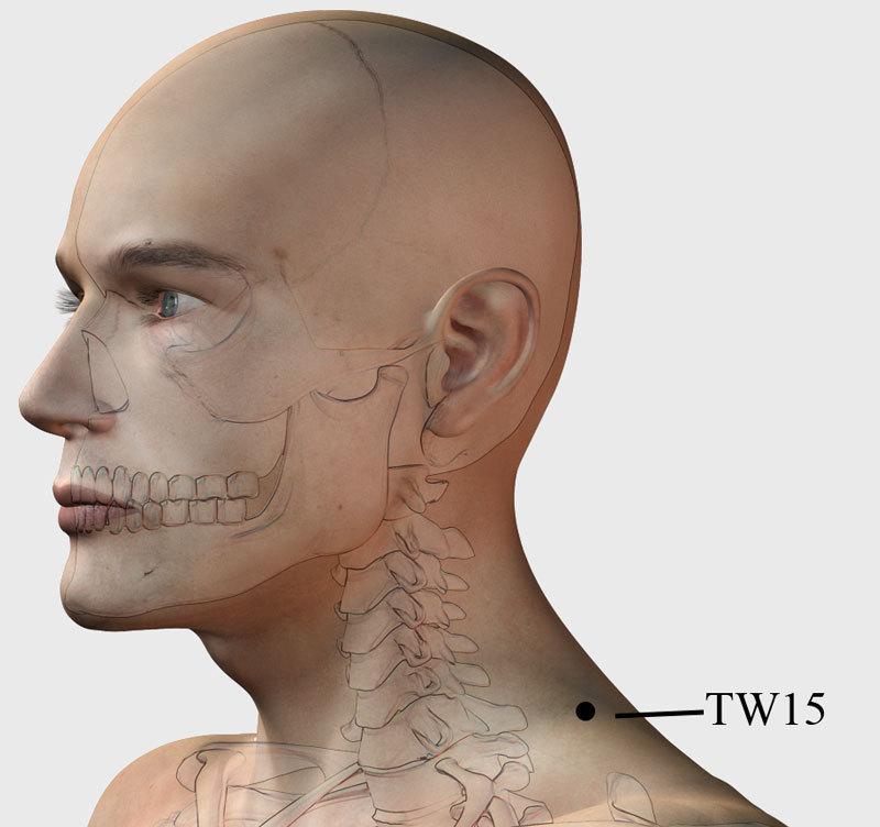 Изображение - Точечный массаж плечевого сустава content_tw15__econet_ru