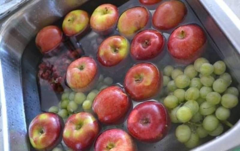Как <a href='http://econet.ru/articles/tagged?tag=%D0%BE%D1%87%D0%B8%D1%81%D1%82%D0%B8%D1%82%D1%8C' target='_blank'>очистить</a> фрукты и овощи от пестицидов: рекомендации фермера