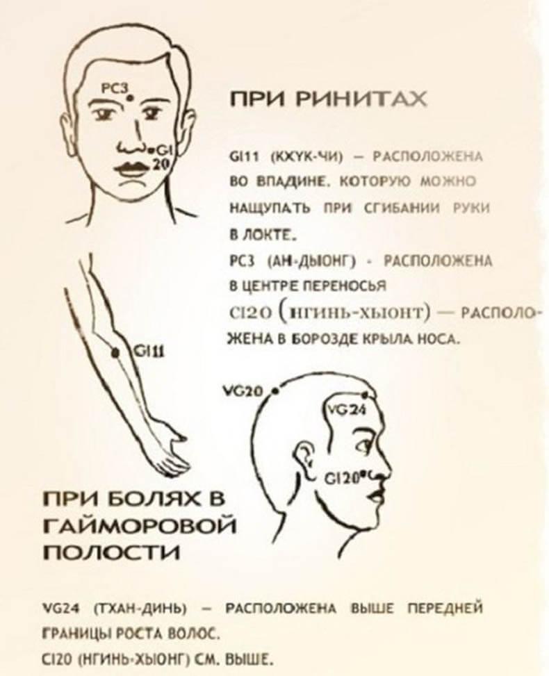 Сустав ноги устроуйство звездочки имплант тазобедренного сустава цена
