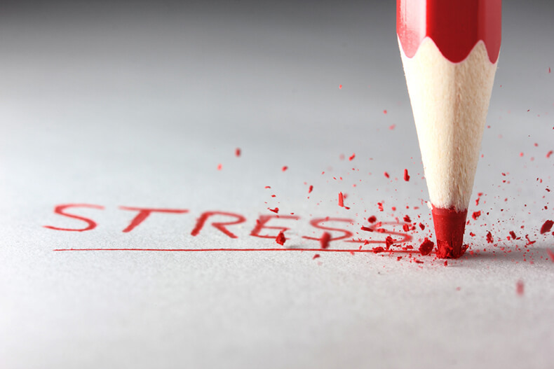 Как воздействует <a data-cke-saved-href='http://econet.ru/articles/tagged?tag=%D1%81%D1%82%D1%80%D0%B5%D1%81%D1%81' href='http://econet.ru/articles/tagged?tag=%D1%81%D1%82%D1%80%D0%B5%D1%81%D1%81' target='_blank'>стресс</a>