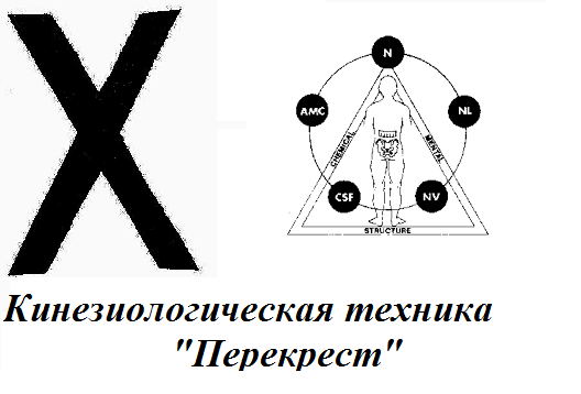"<a  data-cke-saved-href='http://econet.ru/articles/tagged?tag=%D1%82%D0%B5%D1%85%D0%BD%D0%B8%D0%BA%D0%B0' href='http://econet.ru/articles/tagged?tag=%D1%82%D0%B5%D1%85%D0%BD%D0%B8%D0%BA%D0%B0' target='_blank'>Техника</a> ""Перекрёстный кроль"""