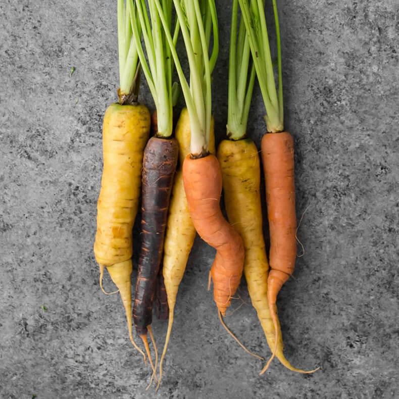 С какими болезнями справляется морковь