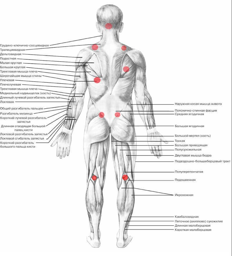 11 ЛУЧШИХ способов освободить НЕГАТИВНЫЕ эмоции через тело