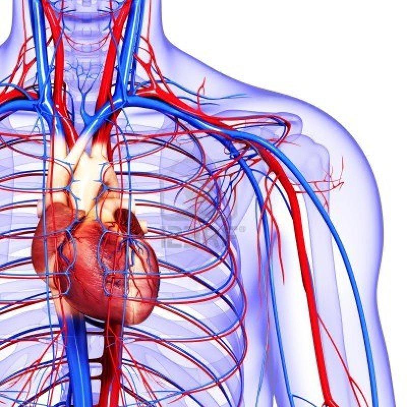 Признаки плохого кровообращения, которые не стоит игнорировать