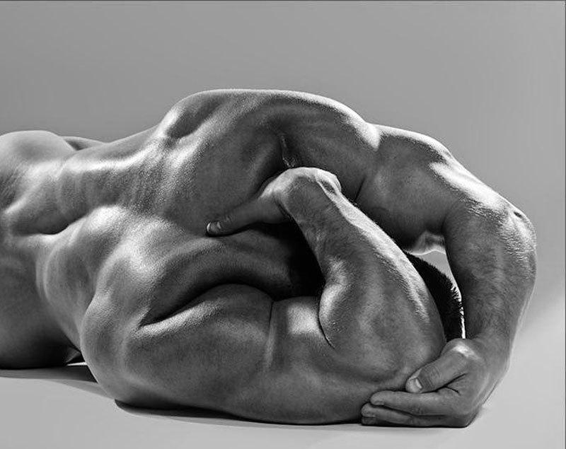 Семь частей мышечной брони