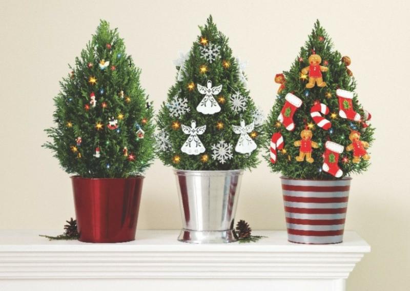 Маленькие новогодние ёлочки для небольших интерьеров