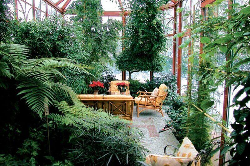 Зимний сад из дерева своими руками