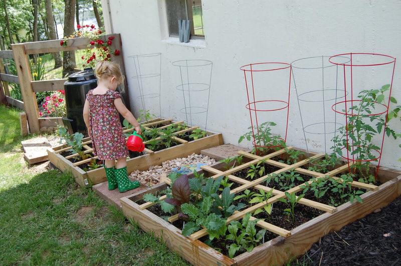 Как сделать грядки для травы