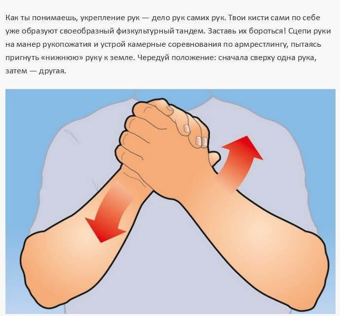Простые <a href='http://econet.ru/articles/tagged?tag=%D1%83%D0%BF%D1%80%D0%B0%D0%B6%D0%BD%D0%B5%D0%BD%D0%B8%D1%8F' target='_blank'>упражнения</a>, тренирующие все 27 мышц рук