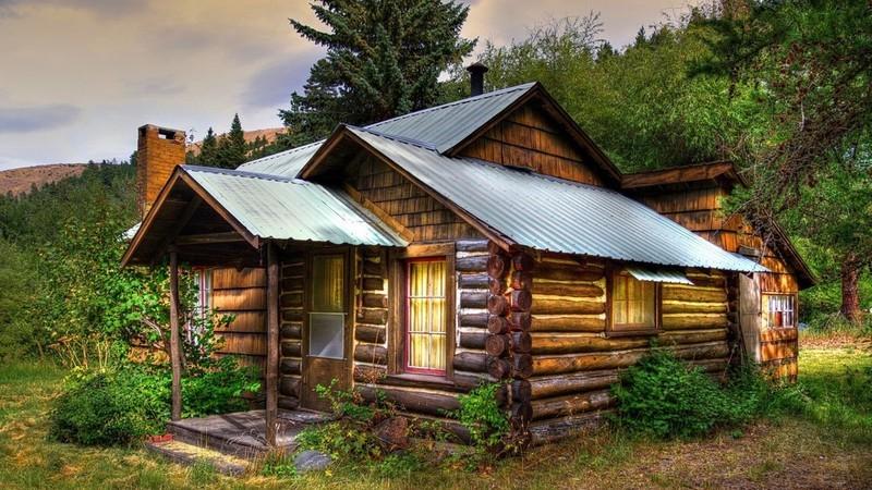 Грибок в деревянном доме - как распознать врага, и как с ним бороться