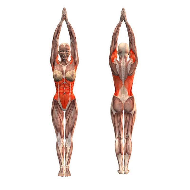 убрать жир со спины и плеч