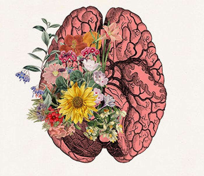 5 удивительных фактов о мозге, которые могут поменять вашу жизнь