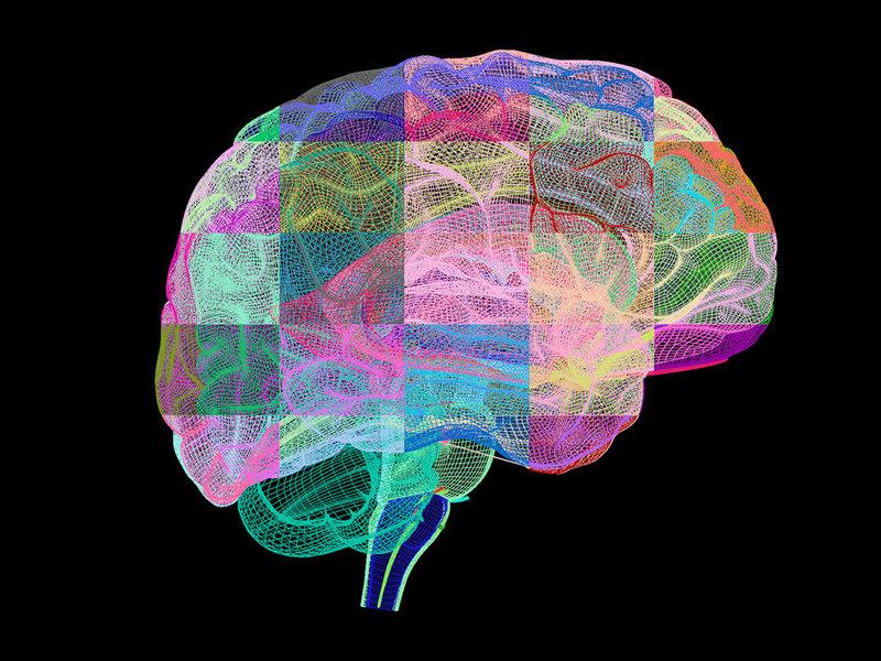 Комплекс кинезиологических упражнений, которые объединяют тело и ум