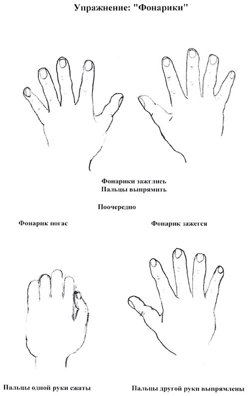 кинезиология