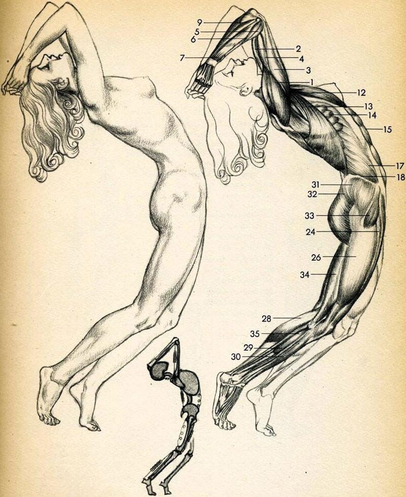 Психосоматика заболеваний суставов