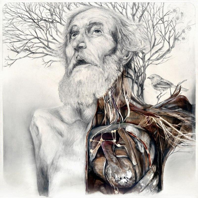 Главная причина ВСЕХ болезней и старения человека