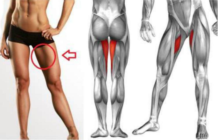 как активизировать работу мышц бедра