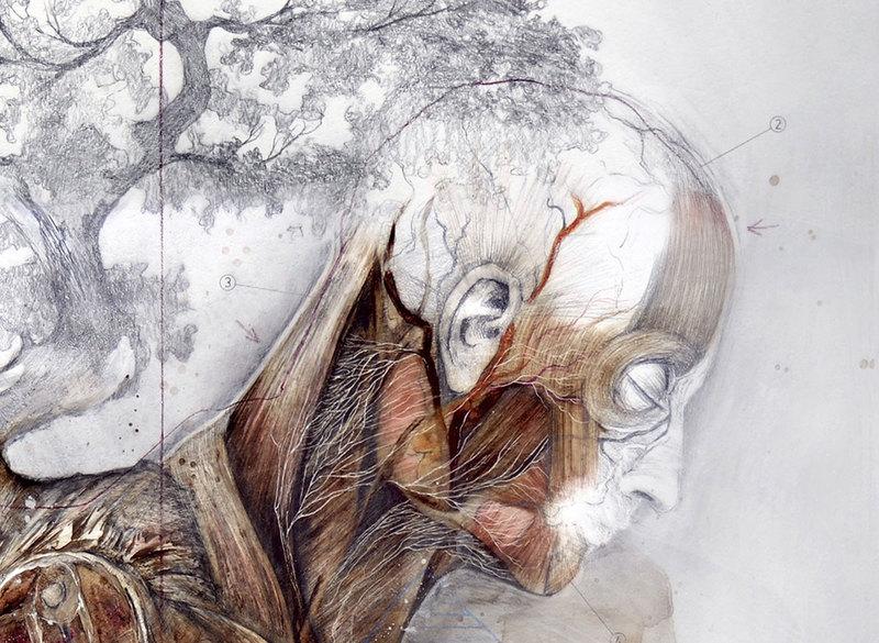 Александр Лоуэн: Гнев и страх в теле человека