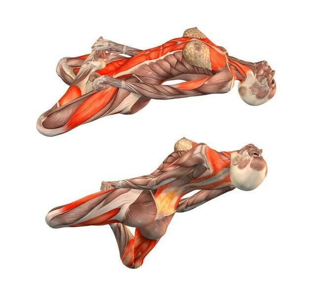 Эффективное лечение бронхита при помощи упражнений