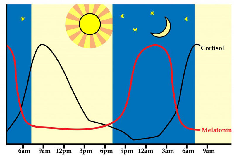 Пока концентрации реагентов неравновесны, колебательные режимы вполне возможны.