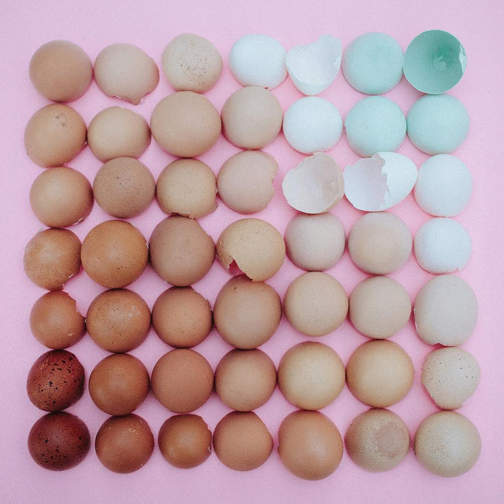 gradient_iz_pomidorov-01
