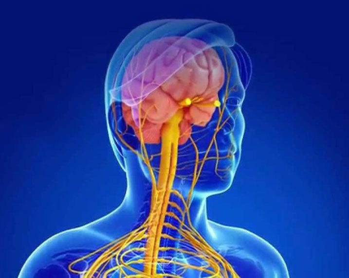 Рассеянный склероз: 14 тревожных симптомов