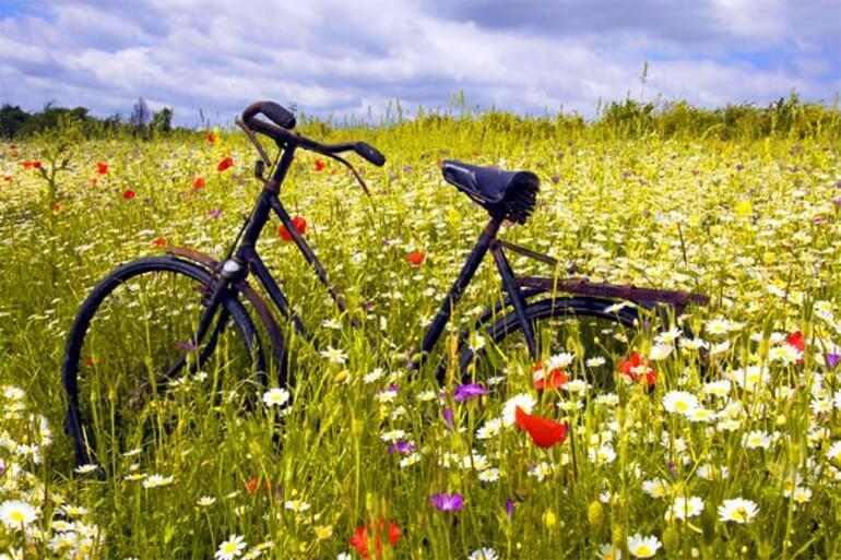 10 вещей, которые нужно успеть сделать, пока лето не кончилось